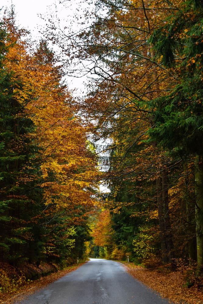 herbst-im-boemerwald