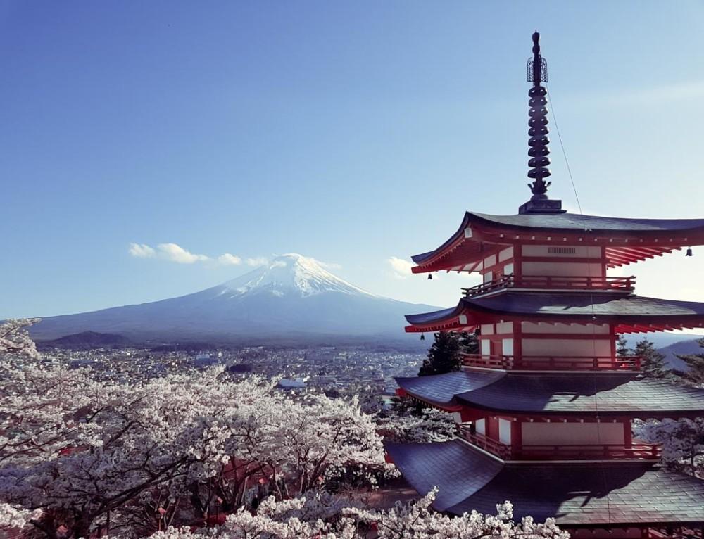 Tokyo für Einsteiger «oder: Unsere Highlights in der Mega-Metropole »