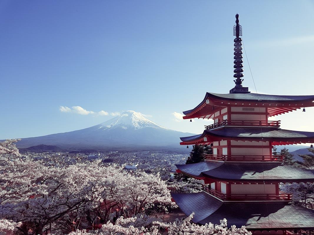 Tokyo Highlights