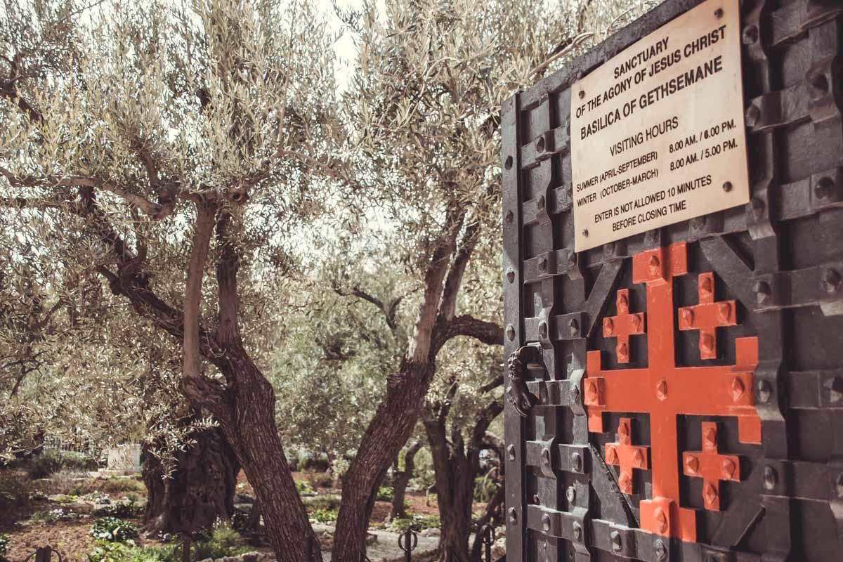 Gethsemane Jerusalem