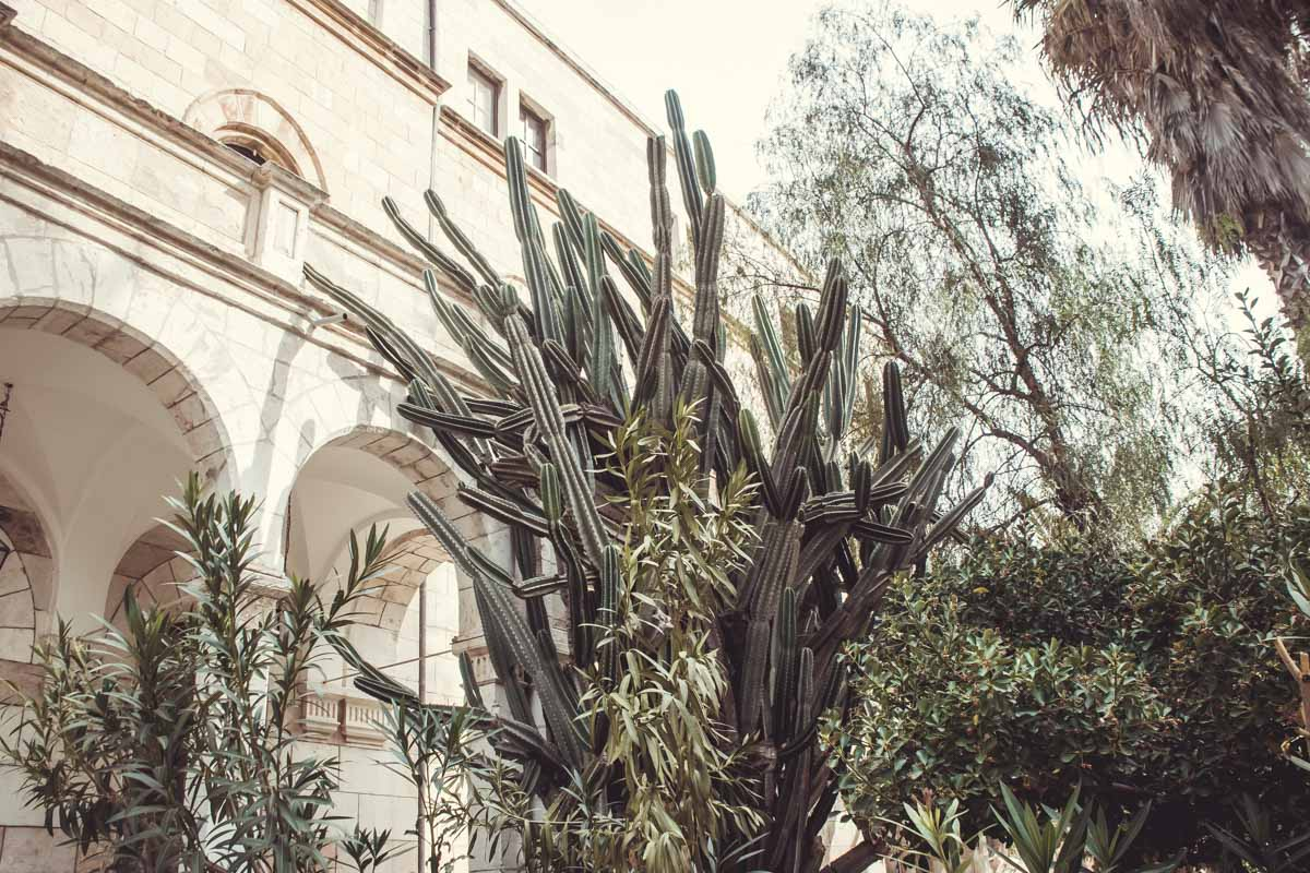 Im Garten des österreichischen Hospiz Jerusalem