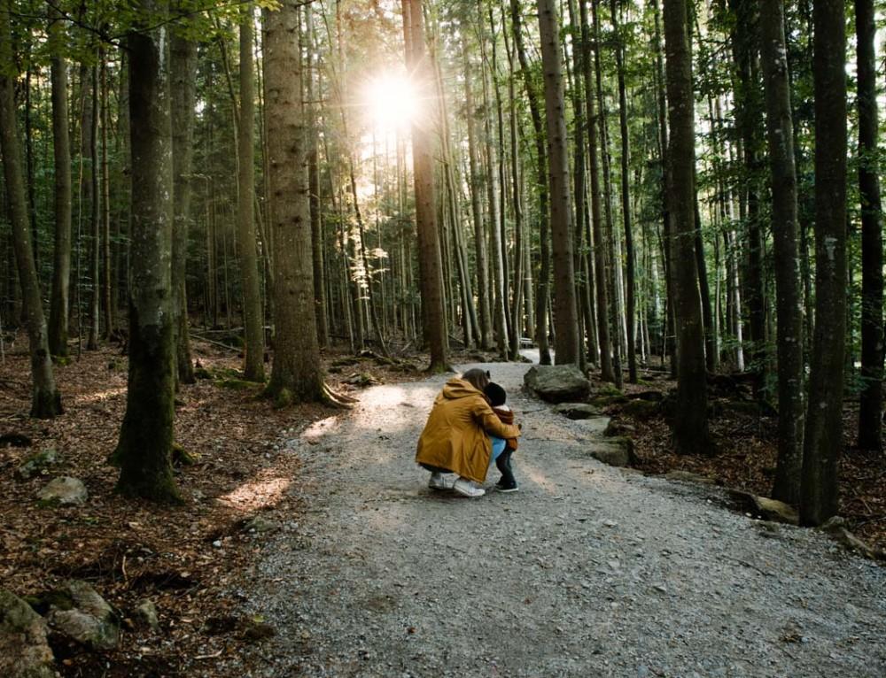 Familienurlaub im Bayerischen Wald  «oder: Das Gute liegt ganz oft so nah»